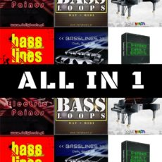 All in 1 - Sample Packs